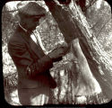 Man with flicker bird in net, Arboretum, Ball State Teachers College