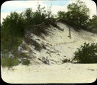 Edge of a blowout dune, Indiana Dunes State Park