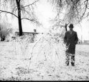 Man with tree limbs covered in ice, Ball State Teachers College