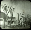 Damaged trees in residential neighborhood, Muncie, Indiana