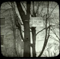 Injured tree with parking sign, Ball State Teachers College