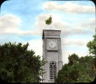 Cottonwood tree growing from the roof of the clock tower of the Decatur County Courthouse,...