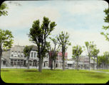 Damaged trees in plaza, Columbus, Indiana