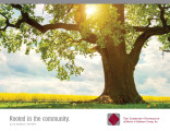Community Foundation of Muncie and Delaware County annual report for 2015