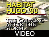 Habitat Hugo '90 : the calming after the storm