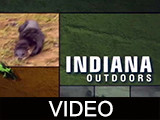 Indiana outdoors episode 102