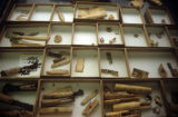 Collections of worked bone