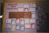 Marc Harshman school library display