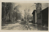 Ebright Street after ice storm, 1930
