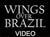 Wings Over Brazil