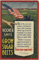 Hoover Says Grow Sugar Beets