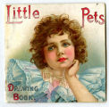 Little pets drawing book