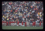 Ball State University Cardinals football team and crowd, 1975