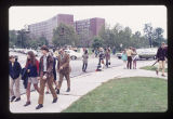Ball State University fans walking to Homecoming game, 1971