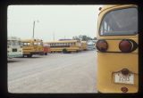 School buses parked on campus