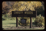 Christy Woods