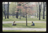 Ball State University students sitting in Old Quadrangle