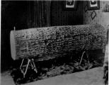 Cary Fenwick, In Oak Log Casket (Closed)- Buried in Saunders Cemetery [See Green Articles]